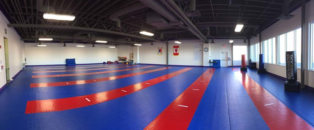 Training floor, main dojang floor